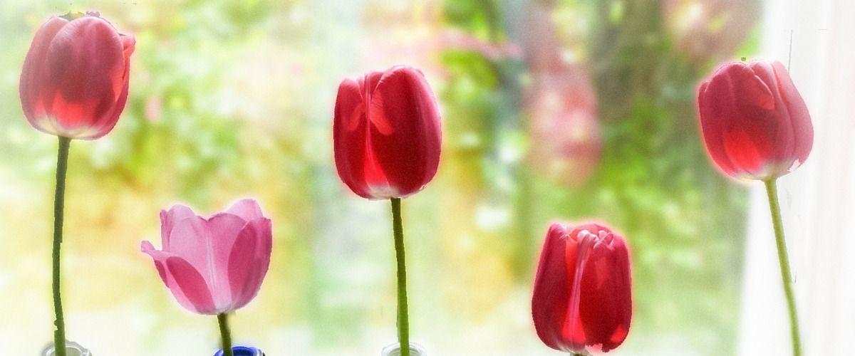5 objets pour faire entrer le printemps chez soi