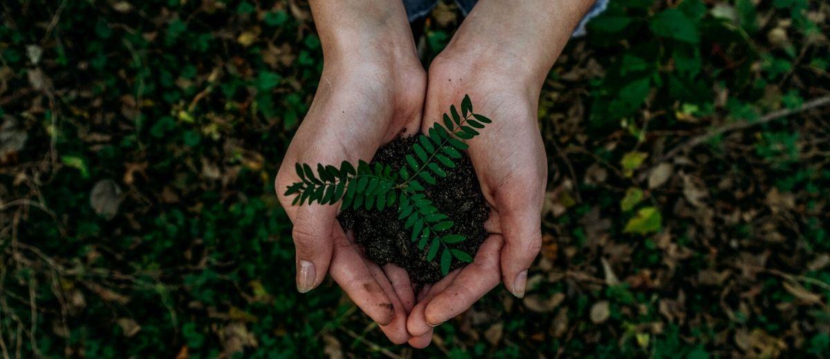 Label Emmaüs, e-commerce à impact environnemental réduit