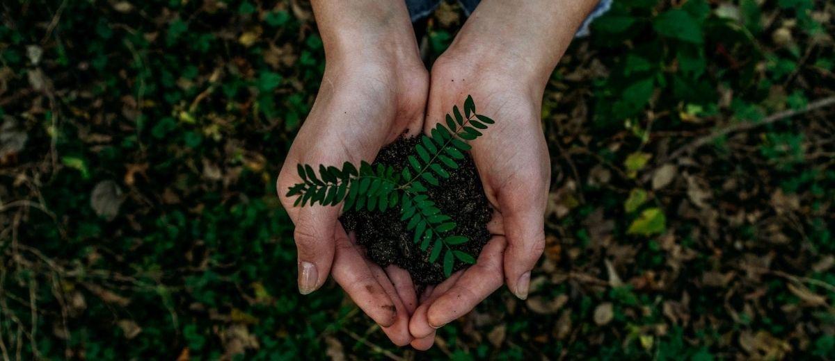 Conseils pour une rentrée écologique