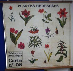 tableau décoration vintage